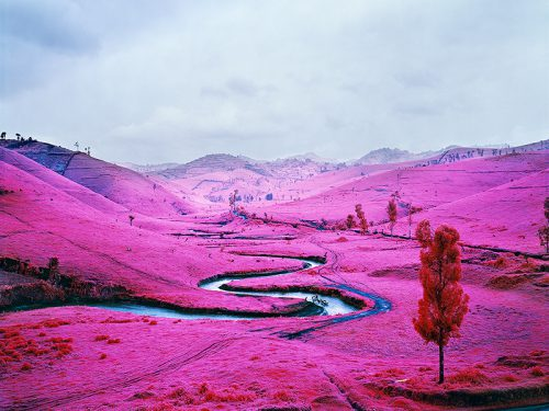 Richard Mosse, Video still